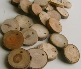 75 Top Drilled Branch Slices 2 to 3 inch
